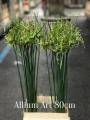 Allium-Art