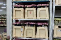 blumengrosshandel-schnittblumen-vahldiek-muttertag-16
